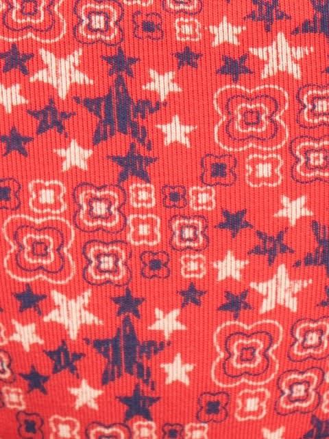 Hibiscus Red Print94 Bikini