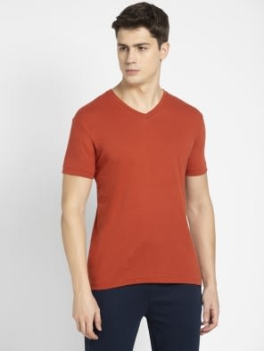 Cinnabar V-Neck T-shirt