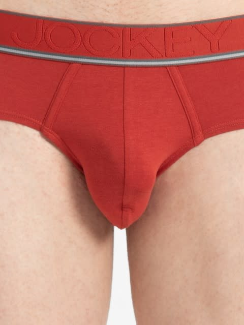 Cinnabar Brief