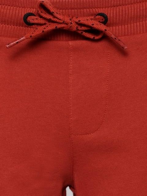 Cinnabar Shorts