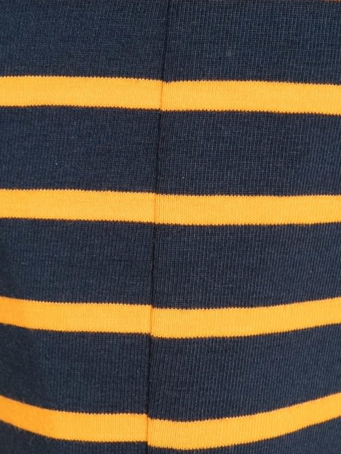 Navy Blue & Autumny Glory  Striped Brief