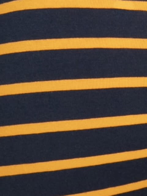 Navy Blue & Autumny Glory  Striped Trunk