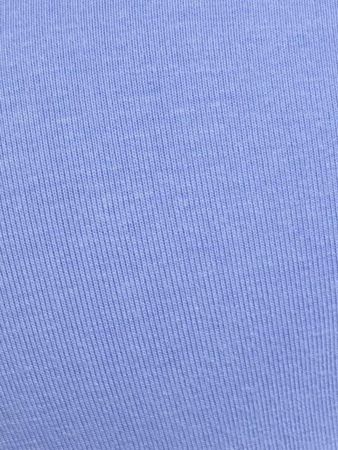 Iris Blue Non-wired Padded Bra