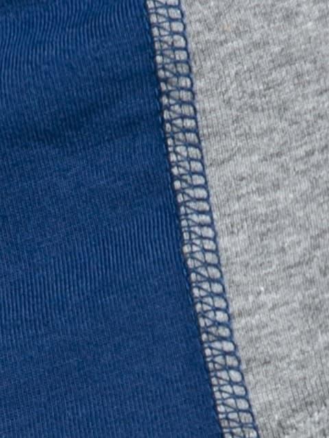 Grey Melange & Estate Blue Fusion Brief Pack of 2