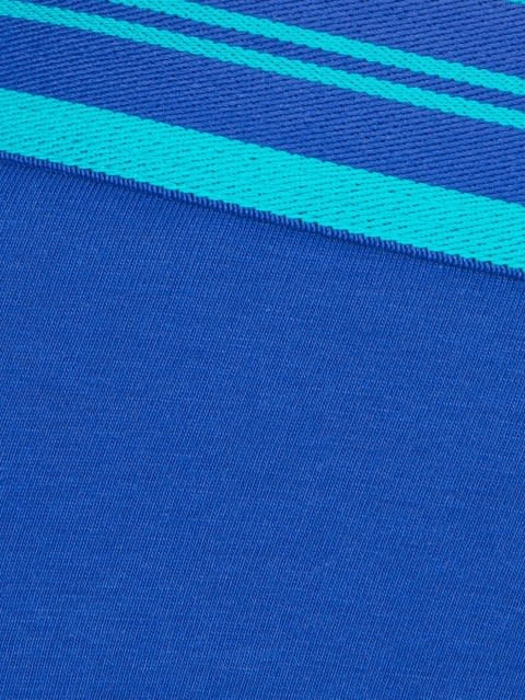 Cobalt Blue Brief