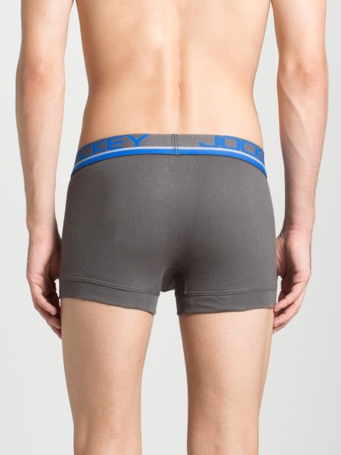 Smooth Grey Modern Trunk Pack of 2
