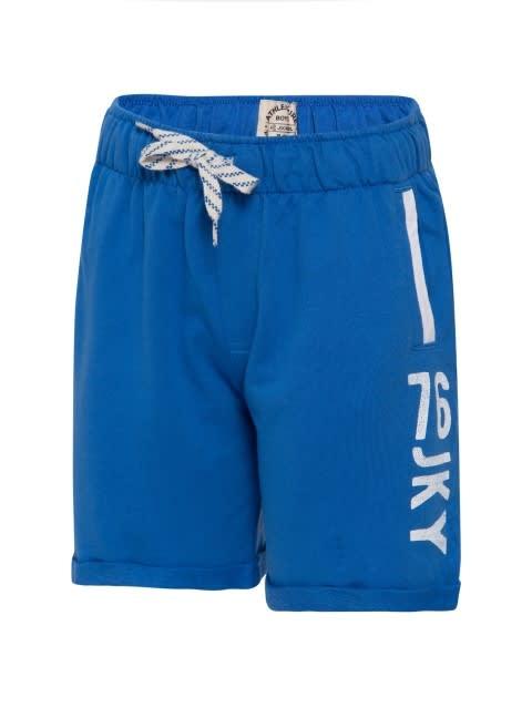 Palace Blue Shorts