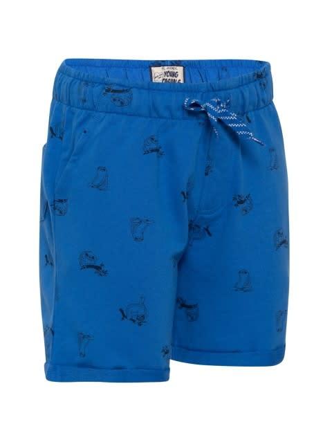 Palace Blue Printed Shorts
